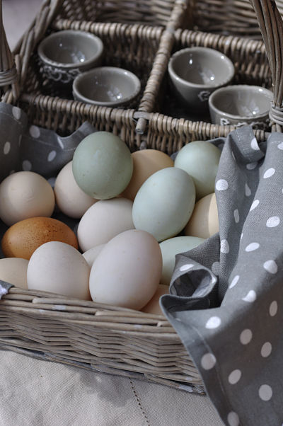 Duck Eggs in basket