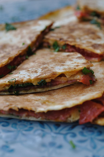 Close-Up Quesadilla