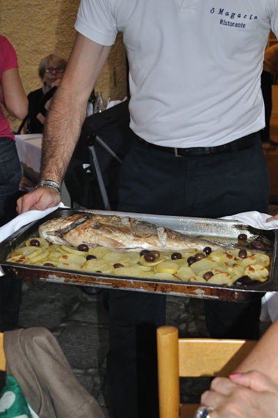 Dinner is served Bream at o Magazin restaurant Portofino