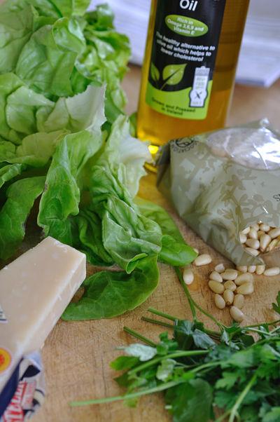 Lettuce Pesto Ingredients