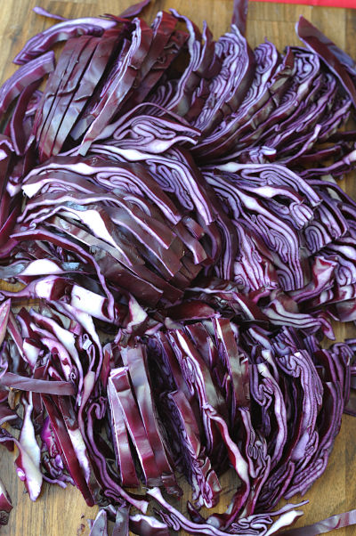 Chopped Red Cabbage_01_opt