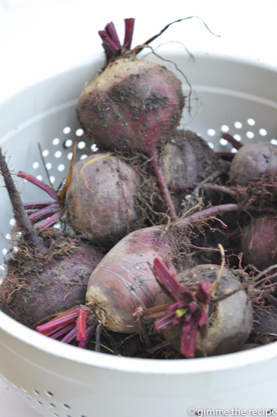 Beetroos topped