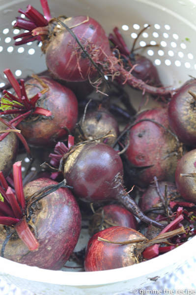Beetroots washed