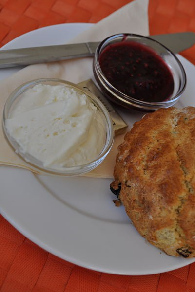 Fresh baked scone with cream and jam at Along the Way, Goleen